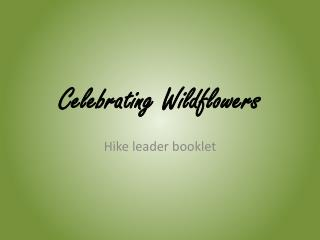 Celebrating Wildflowers