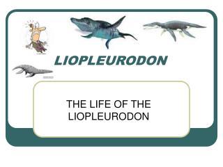 Liopleurodon