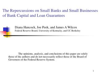 The Repercussions on Small Banks and Small Businesses of Bank Capital and Loan Guarantees