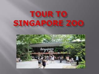 Have a Great Time on Educational Family Tour in Singapore Zo