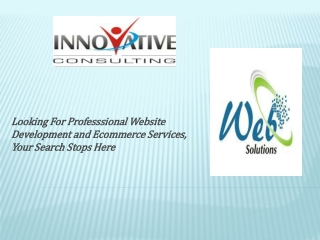 Professional Web Development Solution Services
