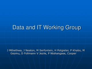 Data and IT Working Group
