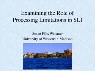 Examining the Role of Processing Limitations in SLI