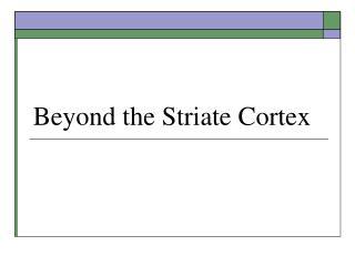 Beyond the Striate Cortex