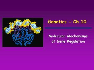 Genetics - Ch 10