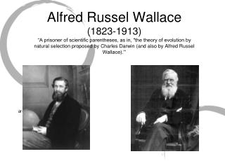 Alfred Russel Wallace 1823-1913  A prisoner of scientific parentheses, as in, the theory of evolution by natural selecti