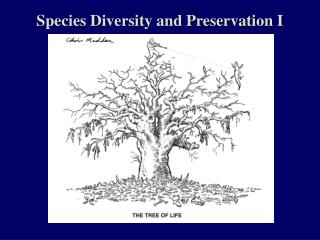 Species Diversity and Preservation I
