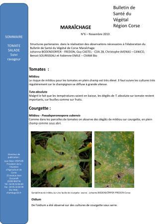 Bulletin de Sant  du V g tal  R gion Corse