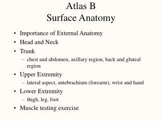 Atlas B Surface Anatomy