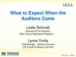 What to Expect When the Auditors Come