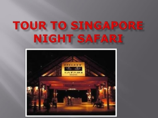 How to Plan Great Singapore City Tour