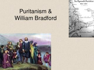Puritanism  William Bradford