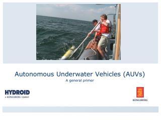Autonomous Underwater Vehicles AUVs