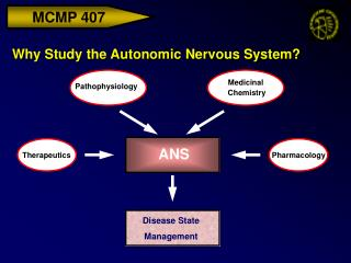 Why Study the Autonomic Nervous System