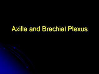 Axilla and Brachial Plexus