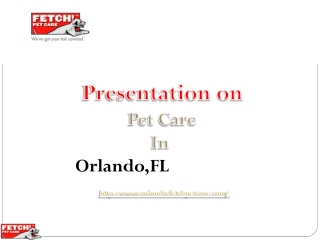 Fetch pet care and its pet care services in Orlando, FL