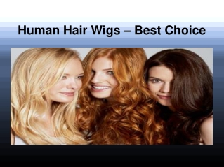 Human Hair Wigs - Best Choice