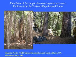 The effects of fire suppression on ecosystem processes: Evidence from the Teakettle Experimental Forest