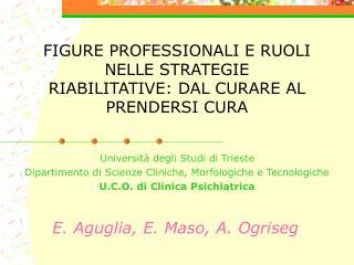 FIGURE PROFESSIONALI E RUOLI NELLE STRATEGIE RIABILITATIVE: DAL CURARE AL PRENDERSI CURA