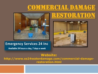 Commercial Damage Restoration
