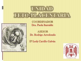 COORDINADOR  Dra. Paola Iturralde   ASESOR  Dr. Rodrigo Arredondo   IP Lesly Carrillo Galv n