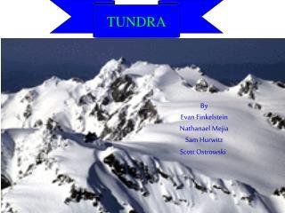 tundra by evan finkelstein nathanael mejia