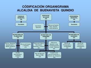 C DIFICACI N ORGANIGRAMA  ALCALDIA  DE  BUENAVISTA  QUINDIO