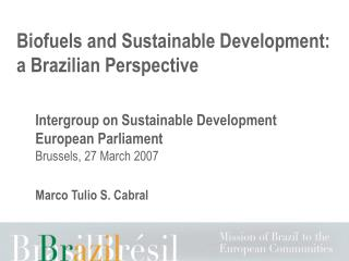 biofuels and sustainable development: a brazilian perspective