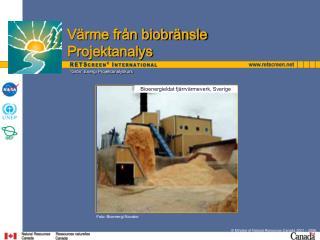 Biomass Heating Project Analysis