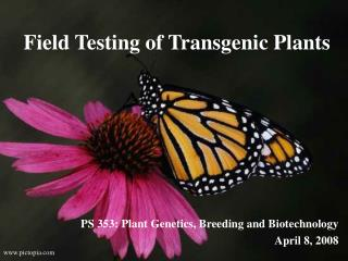 Field Testing of Transgenic Plants