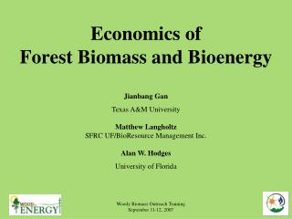 Economics of Forest Biomass and Bioenergy