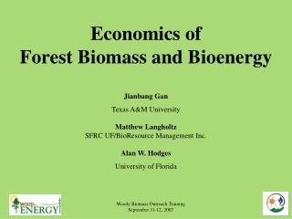 Economics of Forest Biomass and Bioenergy