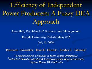 Efficiency of Independent Power Producers: A Fuzzy DEA Approach