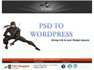 PSD to Wordpress Conversion By CSS Chopper in India
