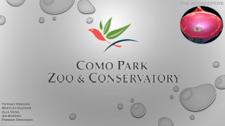 Como Zoo Group Presentation - Draft