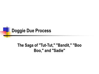 Doggie Due Process