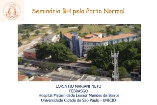 Seminário BH pelo parto normal