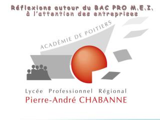 R flexions autour du BAC PRO M.E.I.   l attention des entreprises