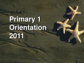 Primary 1 Orientation 2011