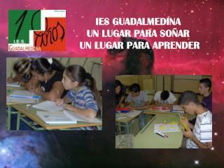 IES Guadalmedina