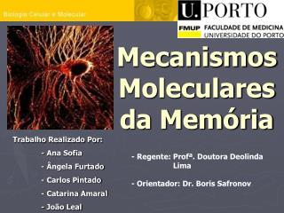Mecanismos Moleculares da Mem