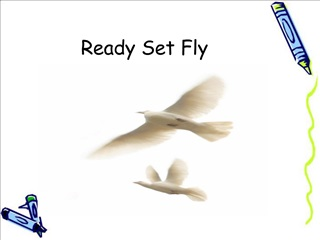 Ready Set Fly