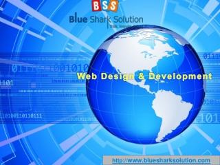 How to choose a professional web design company?