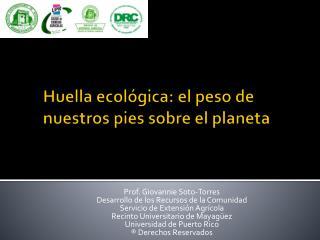Huella ecol gica: el peso de nuestros pies sobre el planeta