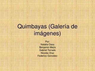 Quimbayas Galer
