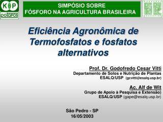 Efici ncia Agron mica de Termofosfatos e fosfatos alternativos