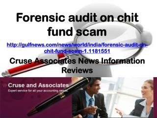 Cruse Associates News Information Reviews: Forensic audit on