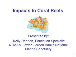 Impacts to Coral Reefs