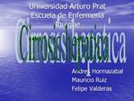 Universidad Arturo Prat Escuela de Enfermer