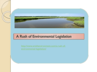 A Rush of Environmental Legislation